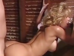 The Golden Age Of Porn Sunset Thomas
